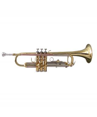 TROMBA SOUNDSATION STPGD-10 GOLD