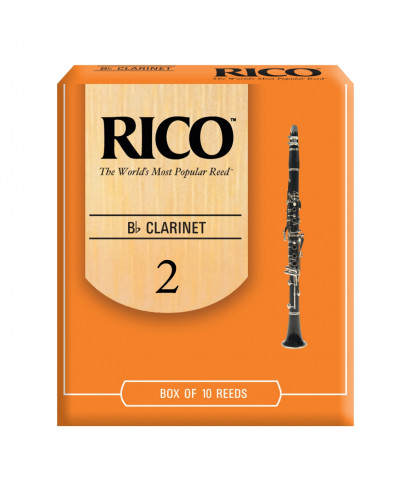 CONF. 10 ANCE RICO RCA 1020 CLARINO SIb 2