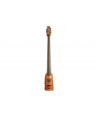 NS Design CR5 Omni Bass 5 corde Fretless