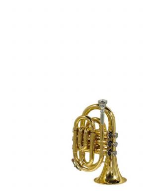 Stewart Ellis SE-1600-L Tromba pocket con astuccio semi-rig